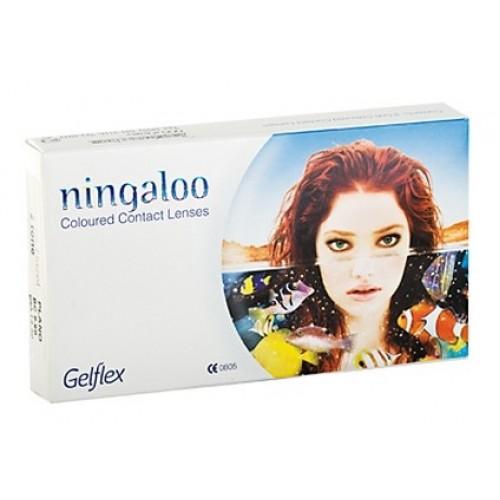 Цветные Контактные Линзы Ningaloo (2-х тоновые)